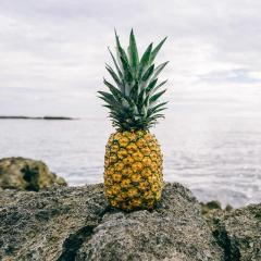 The Big Pineapple